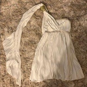 Roman goddess costume